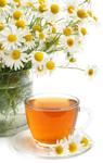 Chamomile has anti-inflammatory properties that could help to treat a number of skin diseases. It could reduce inflammation, heal wounds and prevent itching.