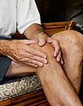 Korean Herb Could Ease Arthritis Pain