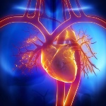 Heart disease causes poor circulation and the two together are now being linked to mental decline in older people.