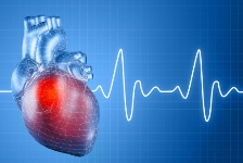 Omega-3 fatty acids are key nutrients for protecting against heart disease.