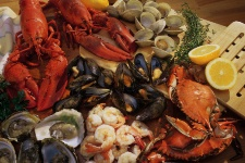 Shellfish may actually help fight numerous health conditions.