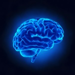Flavonoids are antioxidants that head straight to your hippocampus to boost its function.