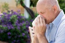 Hay fever involves an allergic reaction to pollen.