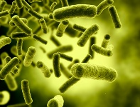 Microbes' ability to out-maneuver the immune system has resulted in a number of pandemics over the course of human history.