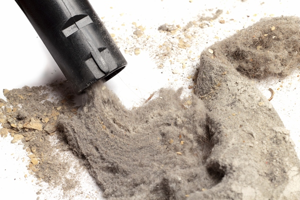 Health Risks of Dust in Your Home