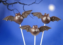 Antioxidant in Chocolate Can Save Memory