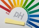 pH Balance and Kidney Health