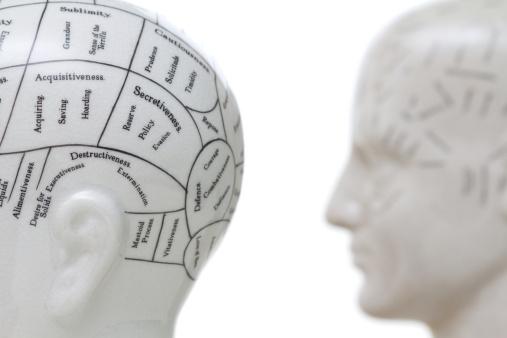 Brain Abnormalities and Schizophrenia