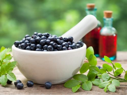 Wild Blueberry Extract