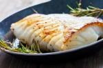 Fish diet in Pregnancy
