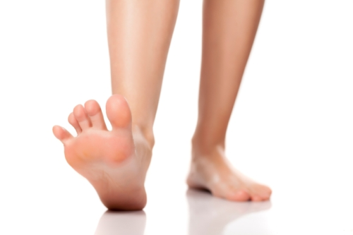 hammer toe exercises, Skeleton