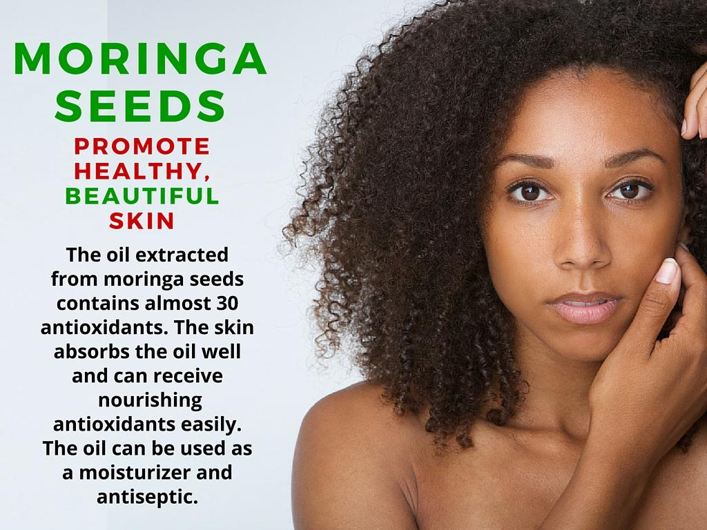 moringa seeds benefits
