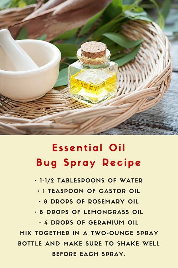 essential oil bug spray recipe