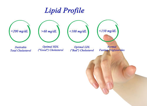 Triglyceride Levels