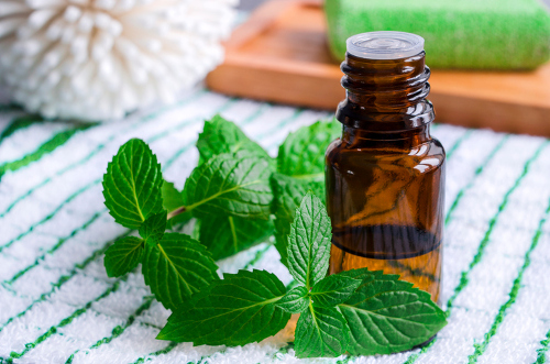 Essential Oil Arthritis