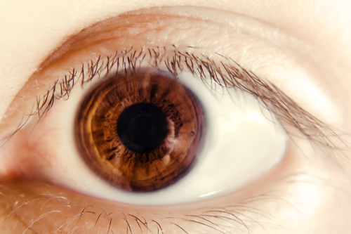 stockvault-eye-126055