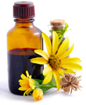 Calendula, heart, cardiovascular disease prevention, alternative remedy, health breakthrough, doctor's advice.