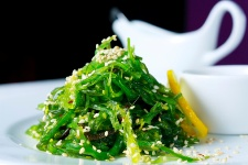 Algae are one of the most nutrient-dense foods on the planet