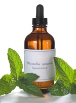 Mint essential oil is a herbal cure that combats nausea.