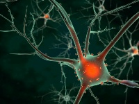 The cure for cancer and Alzheimer's is within our reach but are being blocked by drug laws.