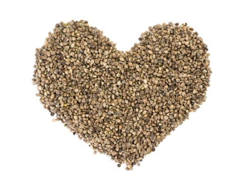 Hemp Seed Protects Your Lungs