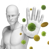Environment and Immune System