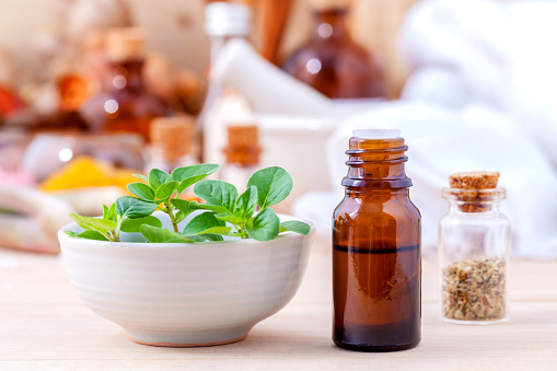 oregano oil better than antibiotics