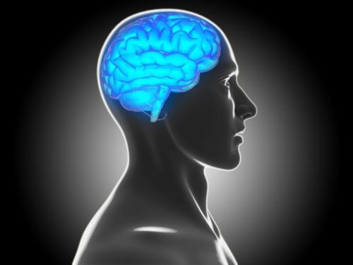 Creatine Monohydrate Brain Health