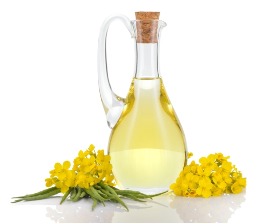 Rapeseed Oil Benefits