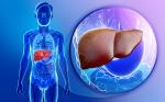 camu camu improves liver health