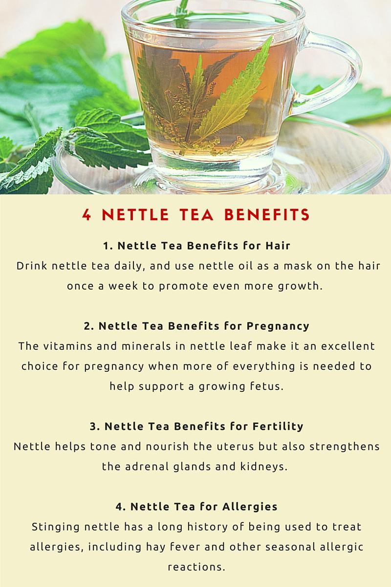 4 nettle tea benefits