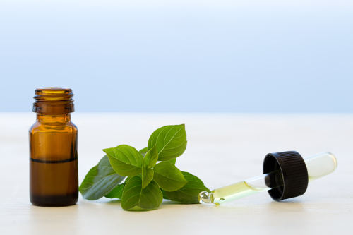 Benefits of Basil Essential Oil