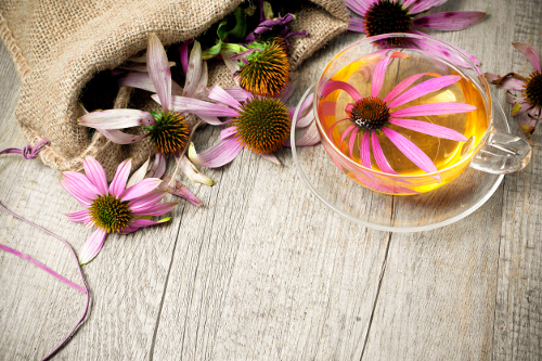 Echinacea and Goldenseal