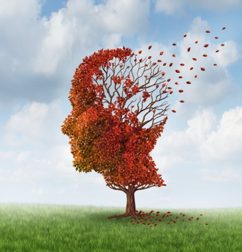 Alzheimer's and Dementia Prevention