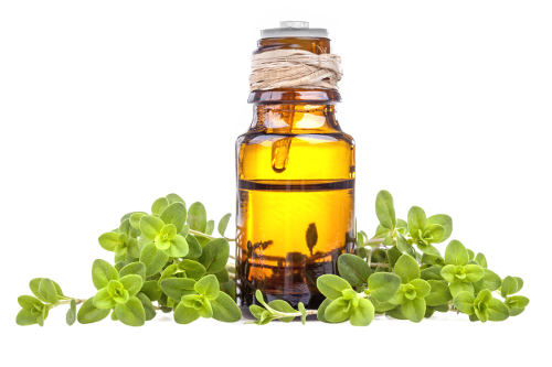 Marjoram Essential Oil