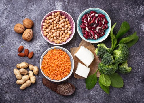 plant sterols cholesterol